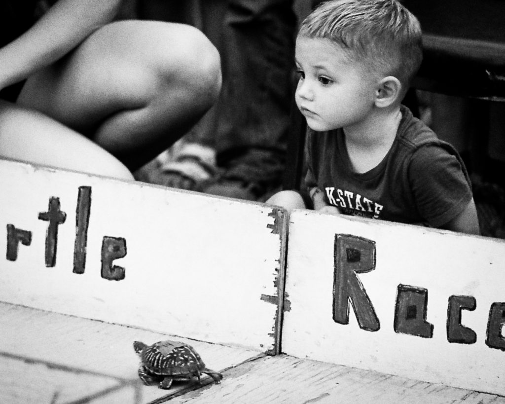 Photo of little boy watching his turtle race during the Leavenworth county fair shot with film camera.. Russell Viers.